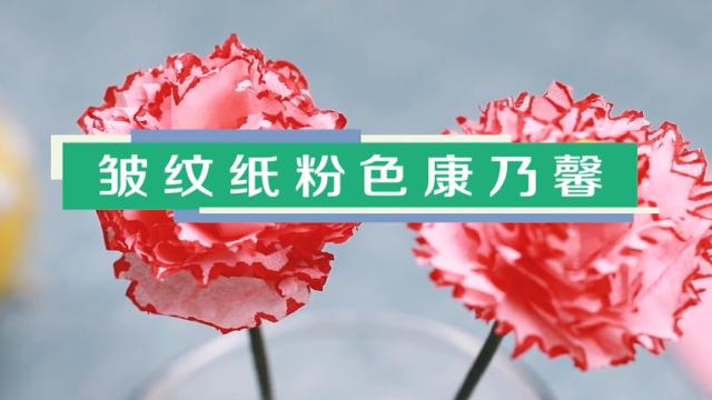 皱纹纸粉色康乃馨视频教程 皱纹纸康乃馨制作方法