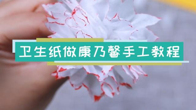 卫生纸康乃馨手工视频教程 卫生纸做康乃馨方法步骤